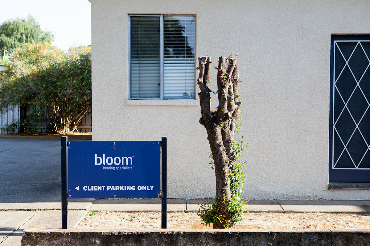 Pruned Blooms